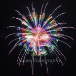 Omagari New Concept fireworks collection | Akita Japan tourist information