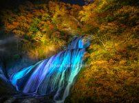 袋田の滝 紅葉ライトアップ