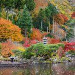 小屋館跡庭園の美しい紅葉|秋保温泉郷 天守閣自然公園|宮城県仙台市