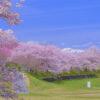 長沼フートピア公園-栗駒山が映える絶景桜名所|宮城県の花見スポット2018