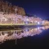 平筒沼ふれあい公園-夜桜も美しい絶景桜名所|宮城県の花見スポット2018